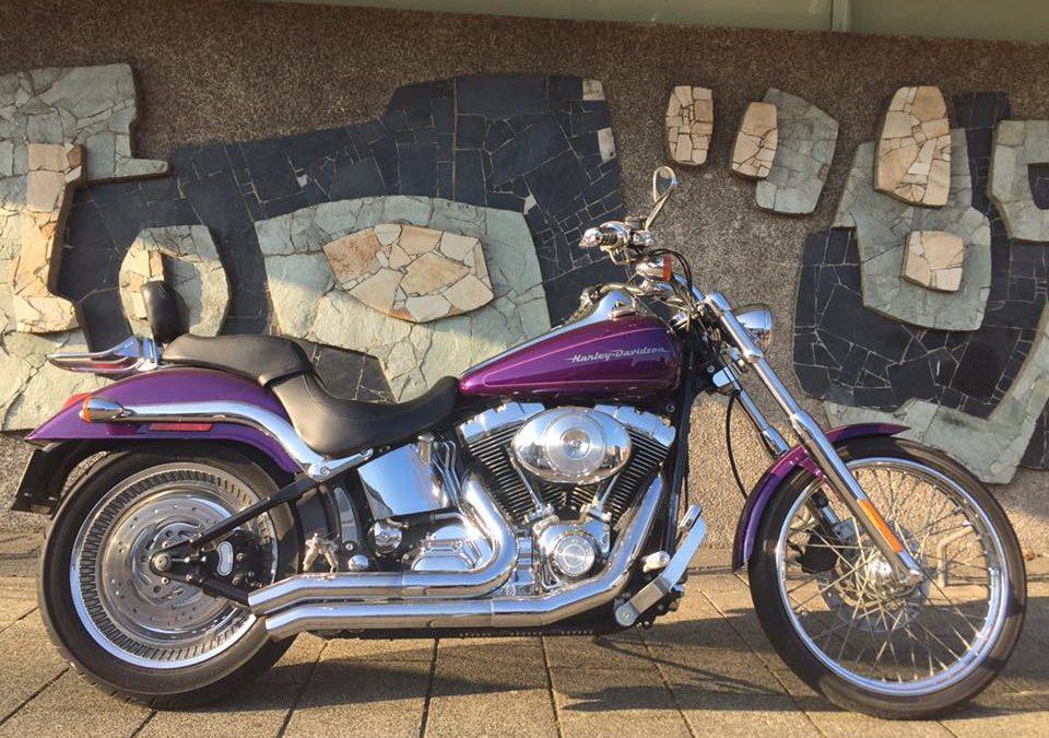 Harley Davidson Deuce 2001